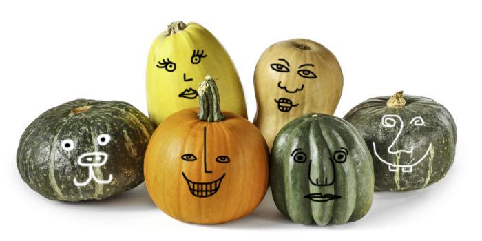 Pumpkin, acorn squash, kabocha squash, spaghetti squash, butternut squash, and buttercup squash