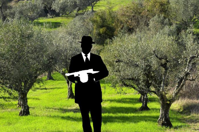 Mafia crops