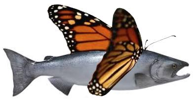 genetically engineered salmon, GMO salmon