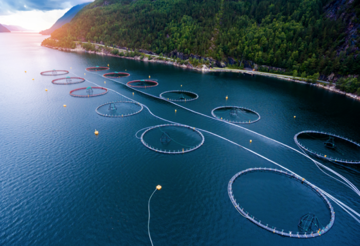 British Columbia fish farm