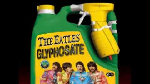 I Believe in Glyphosate (for Beatles fans)