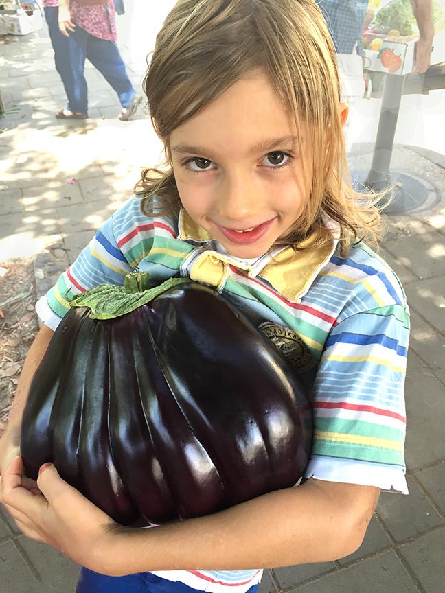 giant eggplant